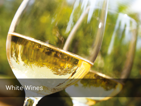 Fine Wine - Red & White Wines, Craft Beers & Spirits - www